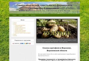 Создание сайта-визитки в Воронеже, Воронежской области, Липецке, Тамбове, Ельце, Белгороде